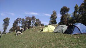 Nag tibba camp